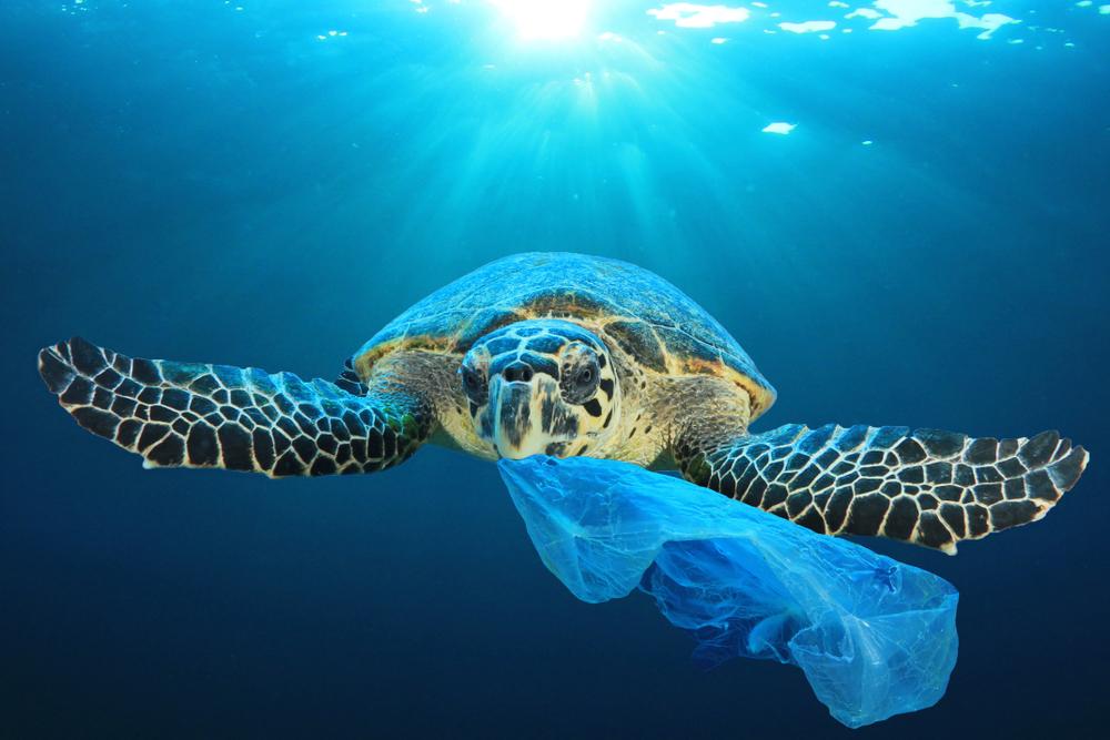 150 MILLIONS DE TONNES de déchets plastiques !